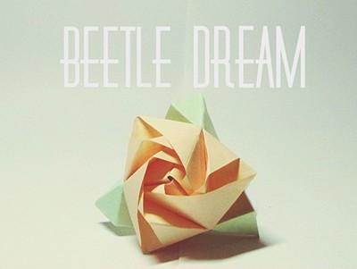 aixa_beetle_destacada